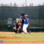 bermuda YAO Baseball april 2015  (4)