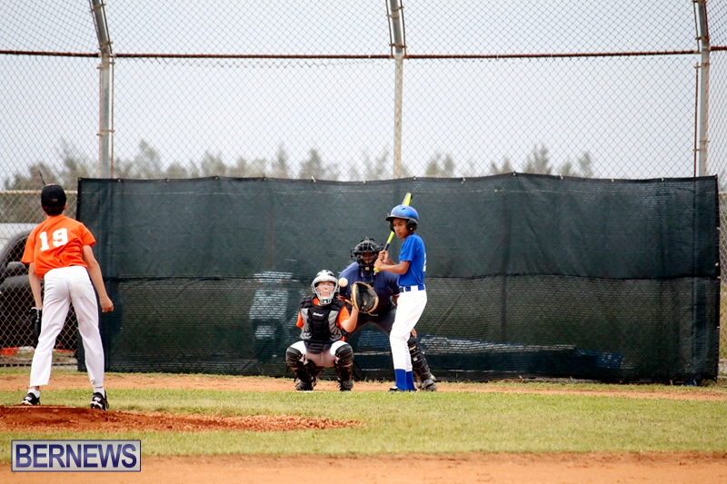 bermuda-YAO-Baseball-april-2015-6
