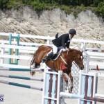 equestrian 2015 April 8 (1)
