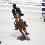 equestrian 2015 April 8 (10)