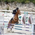 equestrian 2015 April 8 (12)