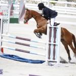 equestrian 2015 April 8 (15)