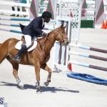 equestrian 2015 April 8 (16)