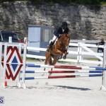 equestrian 2015 April 8 (18)