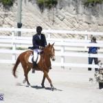 equestrian 2015 April 8 (19)