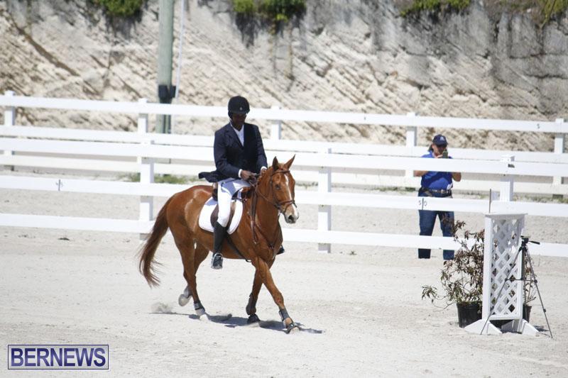 equestrian-2015-April-8-19