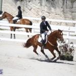 equestrian 2015 April 8 (3)