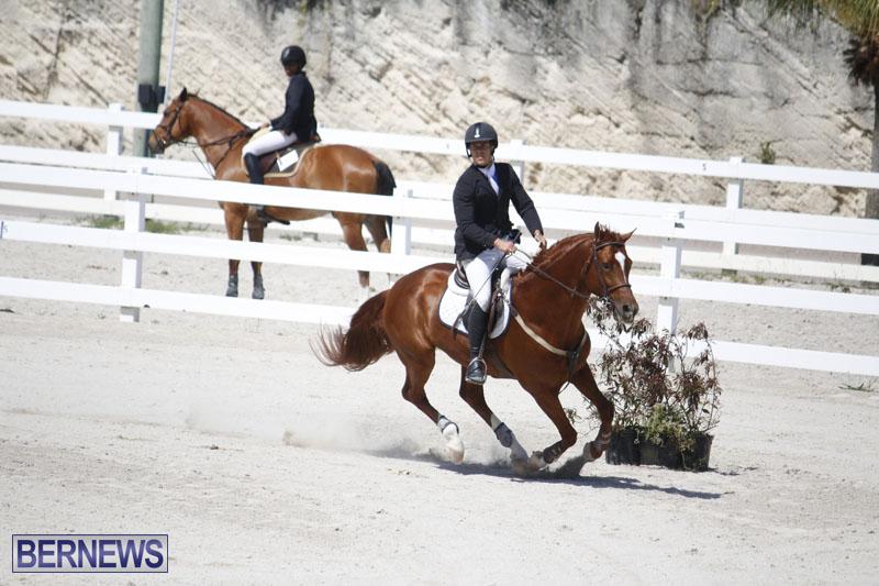 equestrian-2015-April-8-3