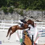 equestrian 2015 April 8 (4)