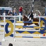 equestrian 2015 April 8 (5)