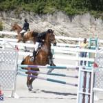 equestrian 2015 April 8 (6)
