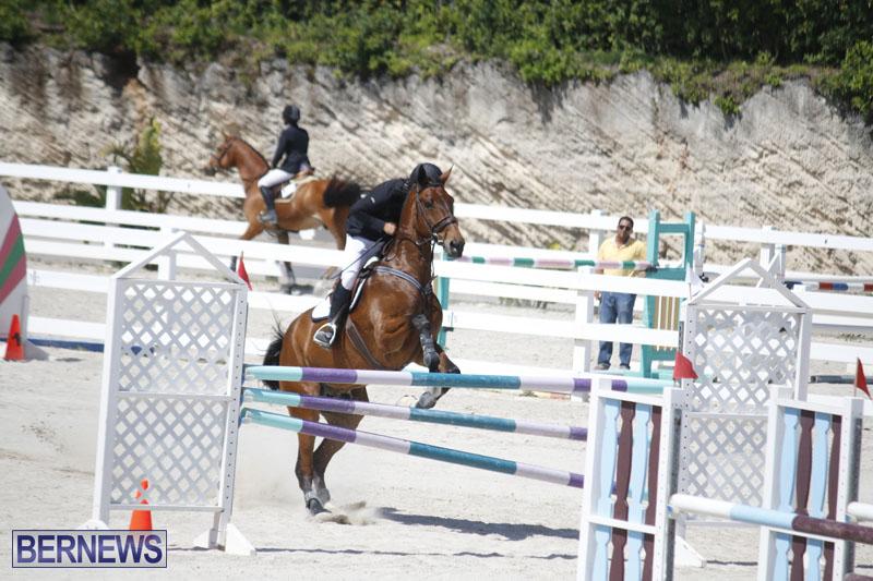 equestrian-2015-April-8-6