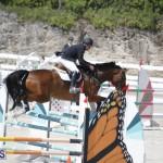 equestrian 2015 April 8 (7)
