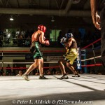fight-night-17-set-3-50