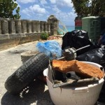 19 Marine litter and more at Grape Bay