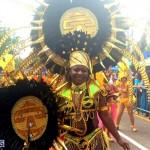 32 bermuda day 2015 parade (1)