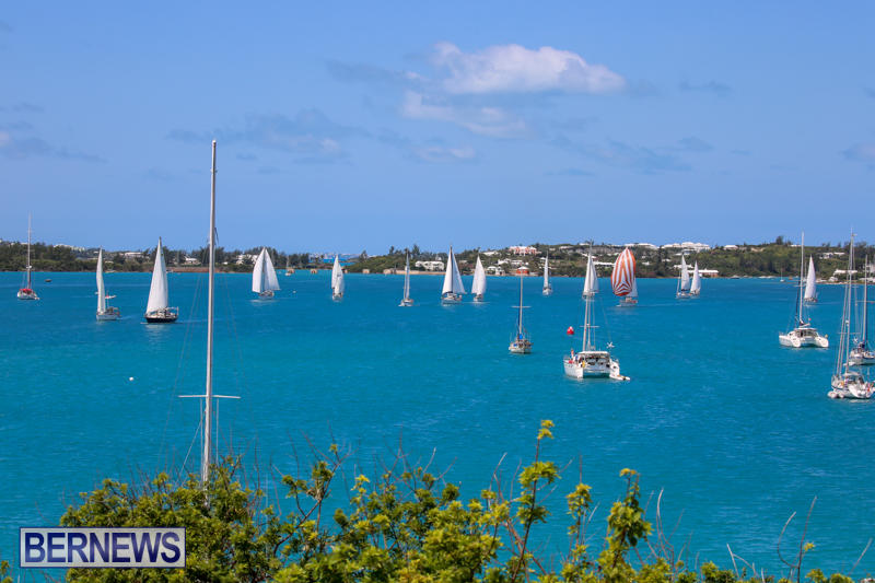 ARC-Europe-USA-World-Cruising-Club-Spring-Rallies-Bermuda-May-20-2015-12