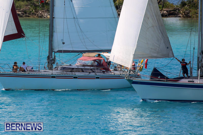 ARC-Europe-USA-World-Cruising-Club-Spring-Rallies-Bermuda-May-20-2015-15