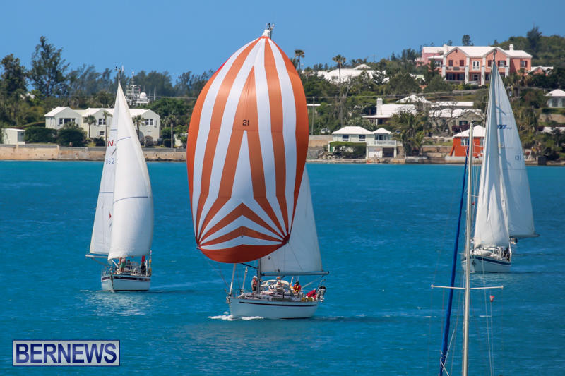 ARC-Europe-USA-World-Cruising-Club-Spring-Rallies-Bermuda-May-20-2015-18