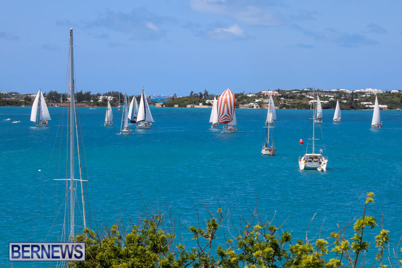 ARC-Europe-USA-World-Cruising-Club-Spring-Rallies-Bermuda-May-20-2015-19