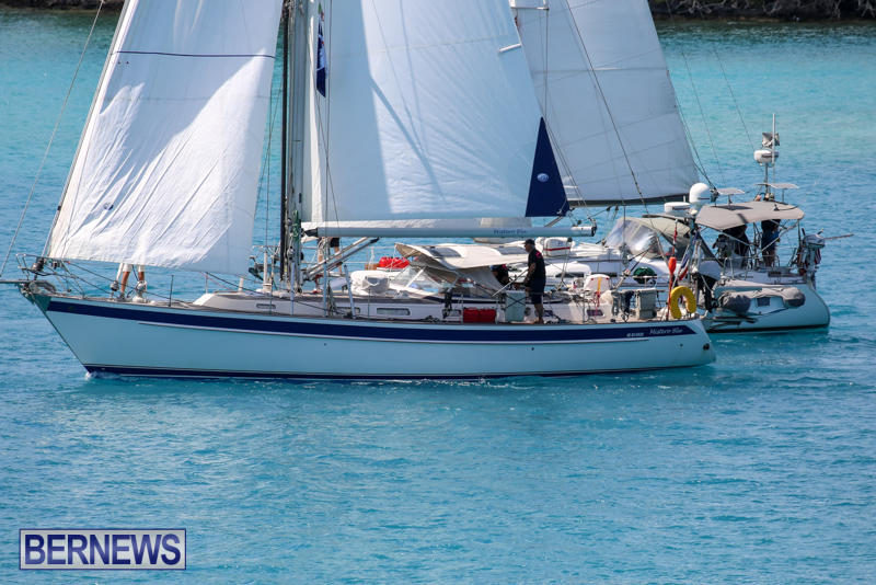 ARC-Europe-USA-World-Cruising-Club-Spring-Rallies-Bermuda-May-20-2015-21