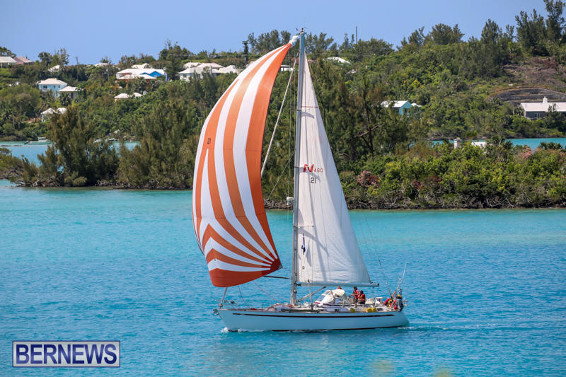ARC-Europe-USA-World-Cruising-Club-Spring-Rallies-Bermuda-May-20-2015-35