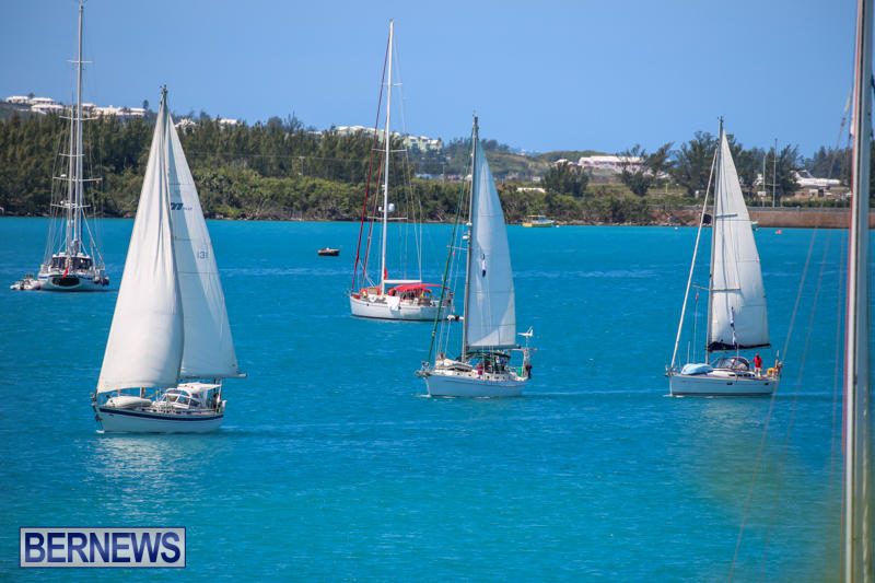 ARC-Europe-USA-World-Cruising-Club-Spring-Rallies-Bermuda-May-20-2015-39
