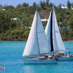 ARC Europe USA World Cruising Club Spring Rallies Bermuda, May 20 2015-41