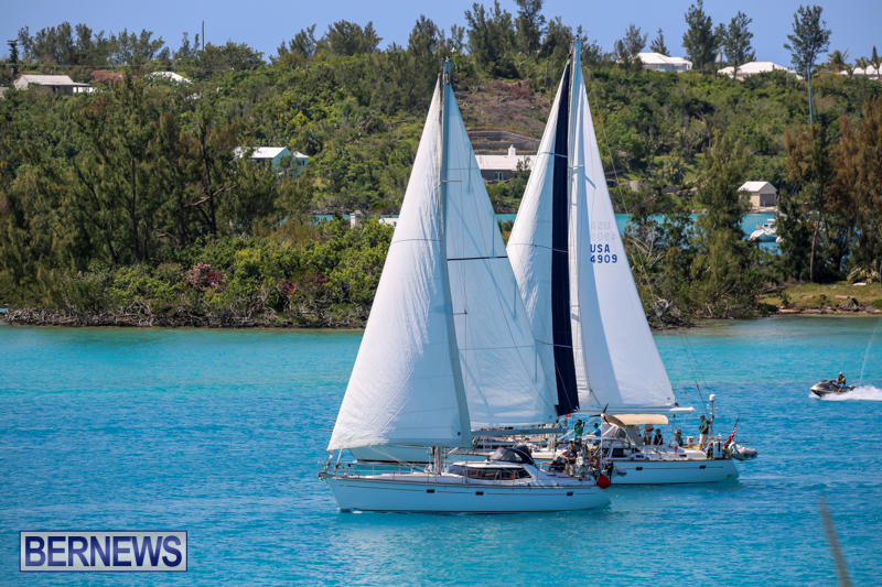 ARC-Europe-USA-World-Cruising-Club-Spring-Rallies-Bermuda-May-20-2015-41