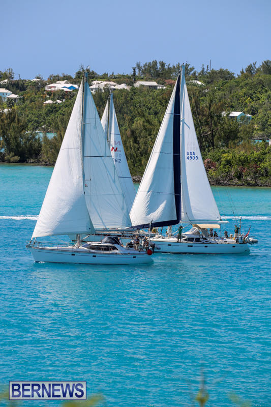 ARC-Europe-USA-World-Cruising-Club-Spring-Rallies-Bermuda-May-20-2015-42
