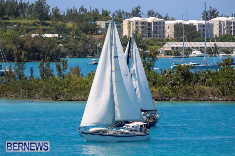 ARC-Europe-USA-World-Cruising-Club-Spring-Rallies-Bermuda-May-20-2015-46