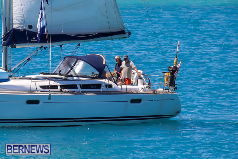 ARC-Europe-USA-World-Cruising-Club-Spring-Rallies-Bermuda-May-20-2015-51