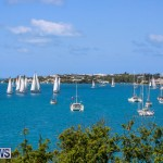 ARC Europe USA World Cruising Club Spring Rallies Bermuda, May 20 2015-6
