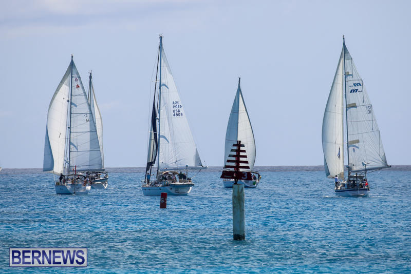 ARC-Europe-USA-World-Cruising-Club-Spring-Rallies-Bermuda-May-20-2015-69