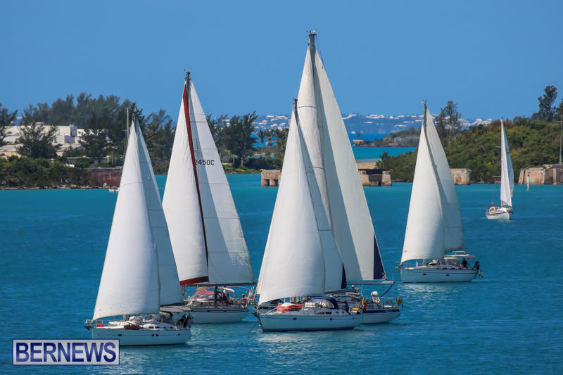 ARC-Europe-USA-World-Cruising-Club-Spring-Rallies-Bermuda-May-20-2015-7