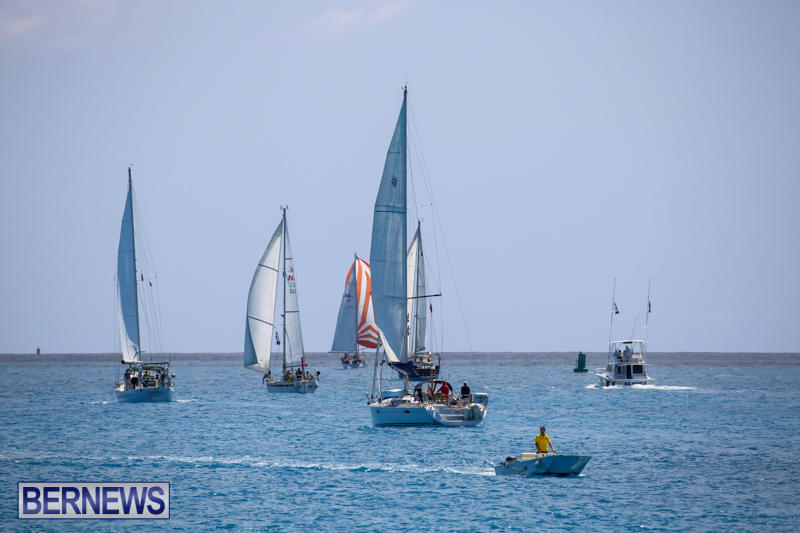 ARC-Europe-USA-World-Cruising-Club-Spring-Rallies-Bermuda-May-20-2015-71