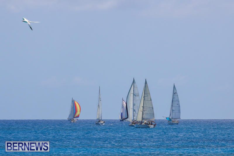 ARC-Europe-USA-World-Cruising-Club-Spring-Rallies-Bermuda-May-20-2015-73