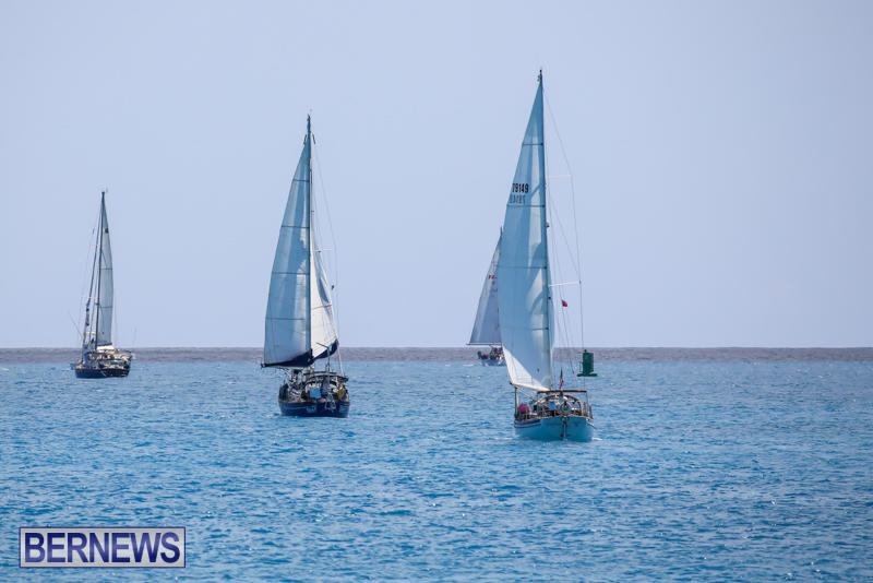 ARC-Europe-USA-World-Cruising-Club-Spring-Rallies-Bermuda-May-20-2015-74