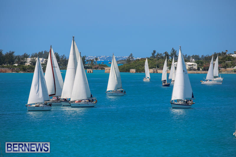 ARC-Europe-USA-World-Cruising-Club-Spring-Rallies-Bermuda-May-20-2015-8