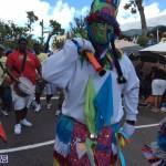 BDA day parade 2015 (4)
