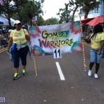 BDA day parade 2015 (8)