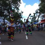 BDA day parade 2015 (9)