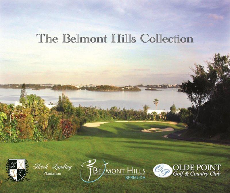 BelmontHillsCollection