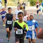 Bermuda Day Half Marathon, May 24 2015-11
