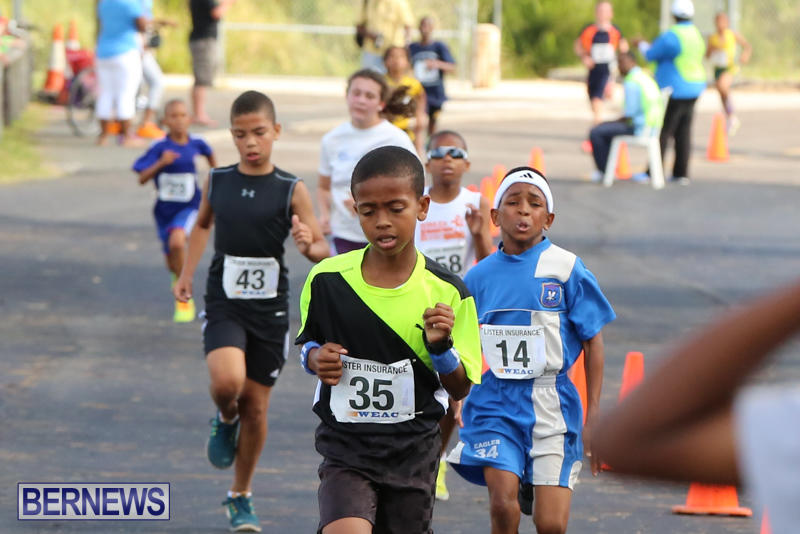 Bermuda-Day-Half-Marathon-May-24-2015-11