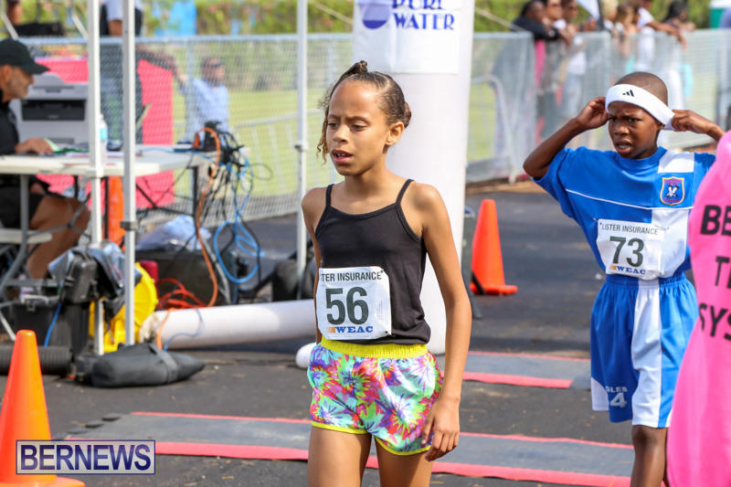 Bermuda-Day-Half-Marathon-May-25-2015-74