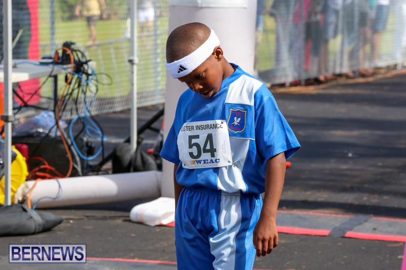 Bermuda-Day-Half-Marathon-May-25-2015-77