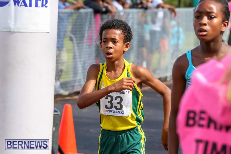 Bermuda-Day-Half-Marathon-May-25-2015-79