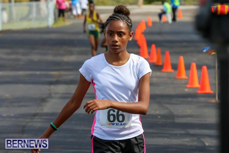 Bermuda-Day-Half-Marathon-May-25-2015-83