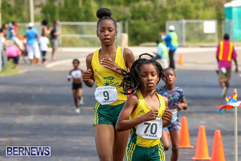 Bermuda-Day-Half-Marathon-May-25-2015-85